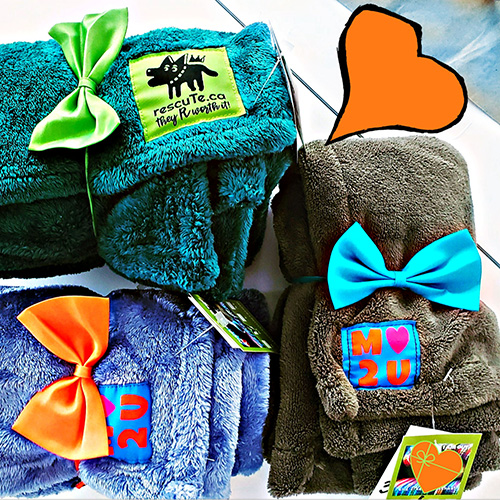 Blankets-and-Bow-Ties