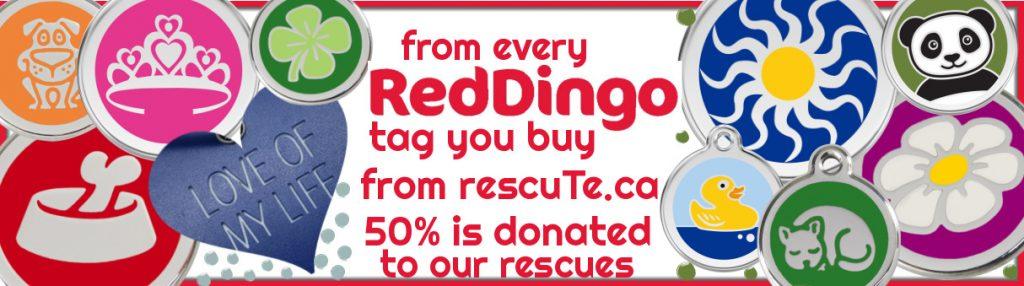 red-dingo-dog-tags-canada