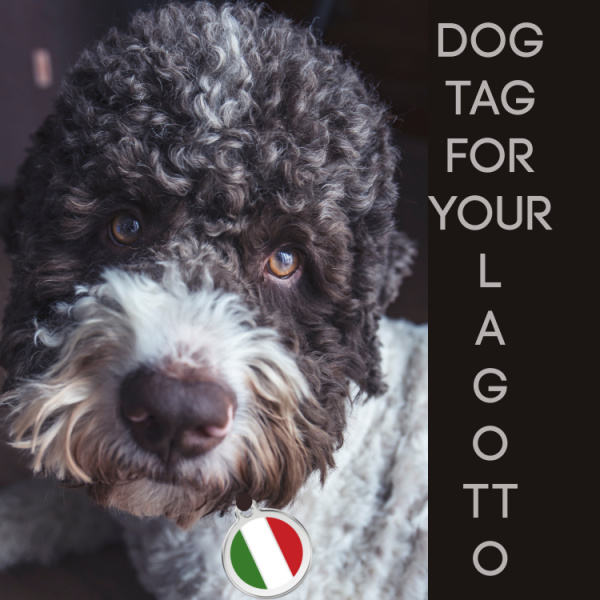 OTHER USES FOR RED DINGO ITALIAN FLAG TAG LAGOTTO